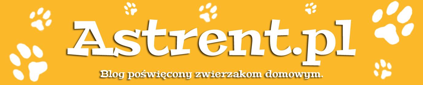 Astrent.pl